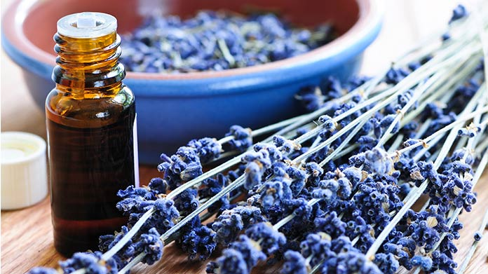 A bottle of essential oil next to a sprig of lavender