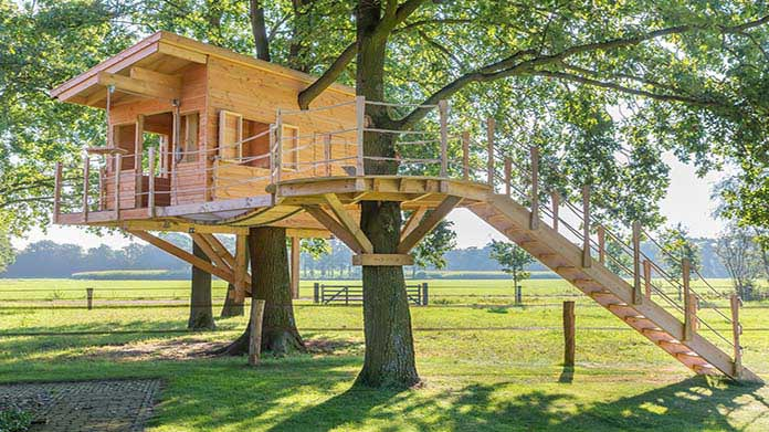 Image of Custom Treehouse Business